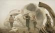 Kong: Wyspa Czaszki - kadry z filmu  - Zdjęcie nr 1