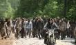 The Walking Dead/Żywe trupy