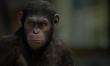 Geneza Planety Małp  - Zdjęcie nr 5