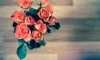 Kwiaty czynią cuda