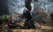 Tajemnice lasu  - Zdjęcie nr 3