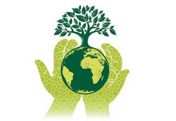 essay on role of youth in environmental protection