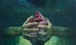 Metamorfoza/magia w obrazie  - Zdjęcie nr 1