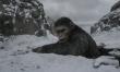 Wojna o planetę małp - zdjęcia z filmu  - Zdjęcie nr 3