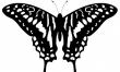 Motyl - wzory damskich tatuaży