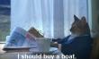 Memy ze śmiesznymi kotami  - Zdjęcie nr 4