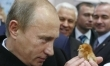 Najlepsze zdjęcia Władimira Putina  - Zdjęcie nr 1