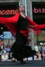 flamencodfce15d7bf7a944d368c6cf296727ad3.jpg