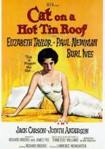Kotka na gorącym, blaszanym dachu