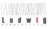 Studio fryzur Ludwig - Gliwice