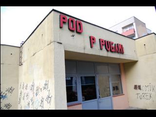 Pod Papugami Pub - zdjęcie
