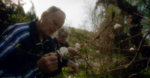 Filmowy Klub Seniorów: Ogródki miłości
