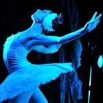 Jezioro łabędzie - Russian National Ballet