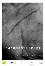 Handsomeforest - wystawa fotografii Klaudii Kot - Kraków