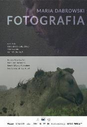 """""""Maria Dabrowski - Fotografia"""" w Galerii New Era Art - Kraków"""