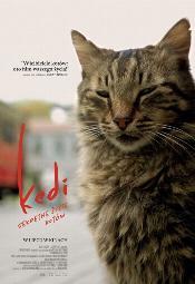 """""""Kedi - sekretne życie kotów"""" przedpremierowo w Multikinie"""