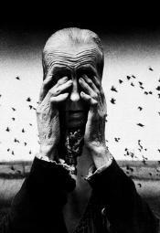 Wystawa fotografii Zofii Rydet