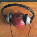 7 sposobów na obranie i pokrojenie cebuli. Będziesz płakać ze śmiechu [WIDEO] - jak obrać cebulę, jak pokroić cebulę