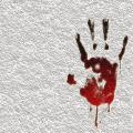 Kolejne fakty w sprawie morderstwa na �oliborzu. Bibliotekarz przewozi� zw�oki ofiary w taks�wce? - kajetan p, morderstwo �oliborz, bibliotekarz morderca