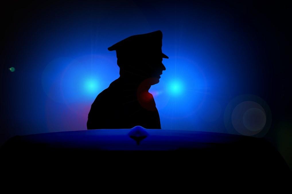 Wzrasta coraz bardziej zainteresowanie studiami związanymi z prawem karnym.