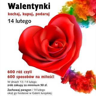 Walentynkowy bukiet z 600 róż - galeria jurajska, róże na walentynki