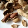Czy mas�o orzechowe jest zdrowe? - orzechy arachidowe, mas�o orzechowe, orzeszki ziemne, fistaszki, bia�ko ro�linne