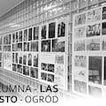 """Wernisaż wystawy """"Kolumna - Las Miasto - Ogród"""" - Wydarzenie, wystawa, prace, studenci, książka"""
