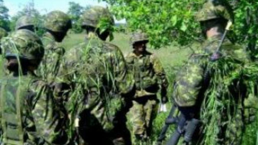 Chcą nas w Brytyjskiej Armii!