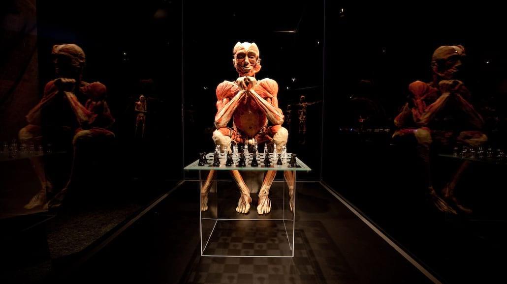 Najsłynniejsza wystawa świata do zobaczenia w Łodzi [FOTO]