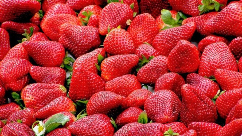 Zobacz, dlaczego warto jeść truskawki! Zaskakujące właściwości