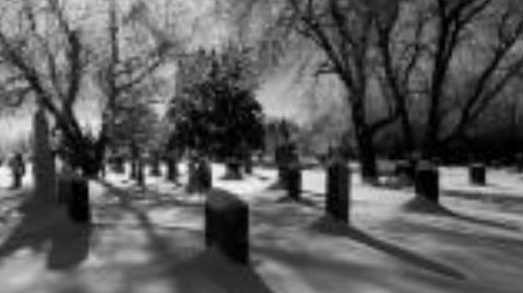Cmentarzysko w sieci