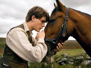 Najlepsze filmy o koniach: Zobacz różne oblicza przyjaźni - zestawienie, motyw koni w filmach, motyw konia, najciekawsze