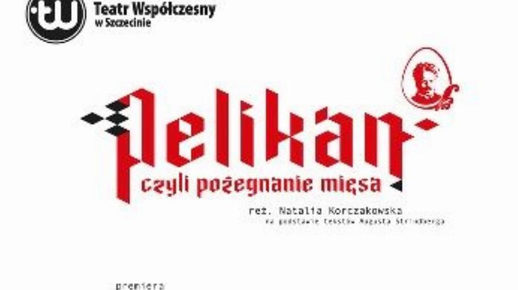 """""""Pelikan"""" - premiera w Teatrze Współczesnym"""