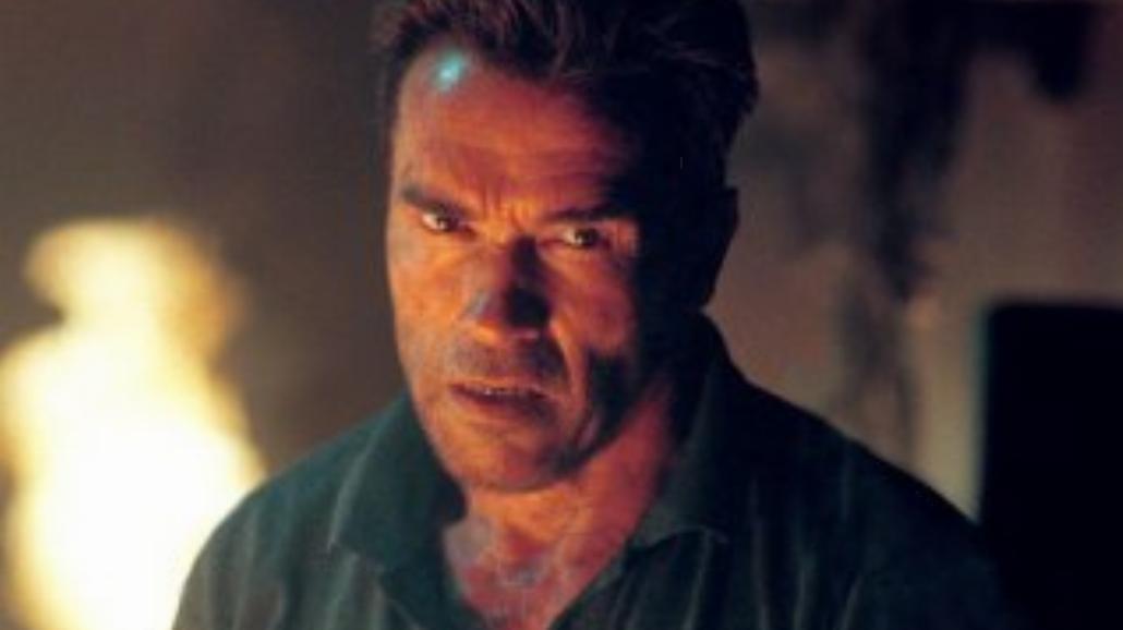 Schwarzenegger oddaje skarby nazistów
