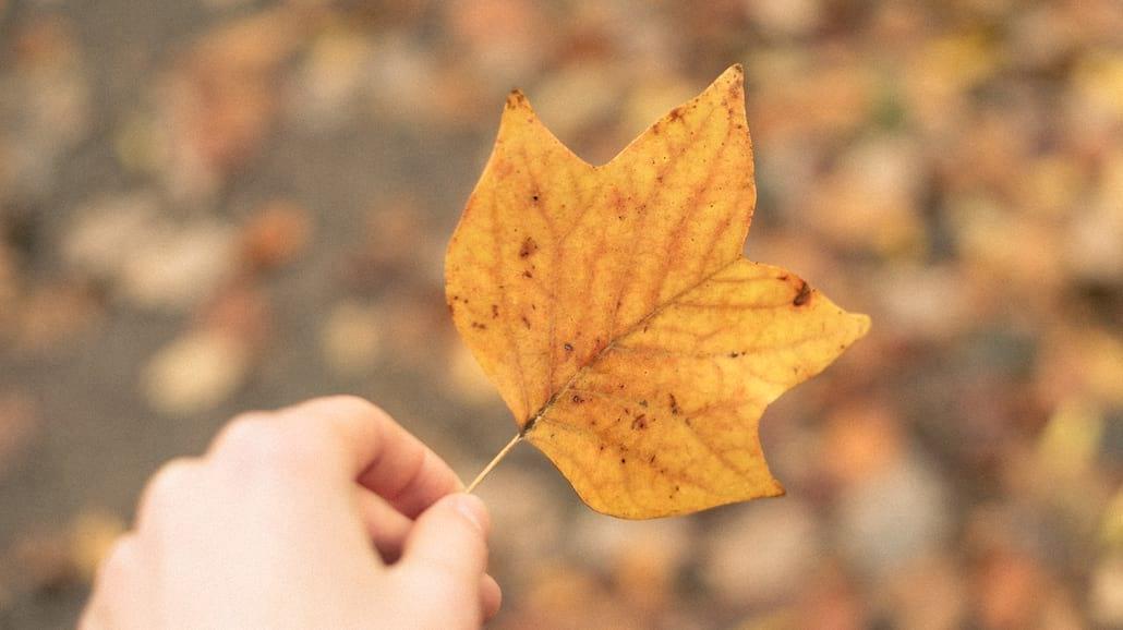 Jak spędzić jesienny długi weekend?