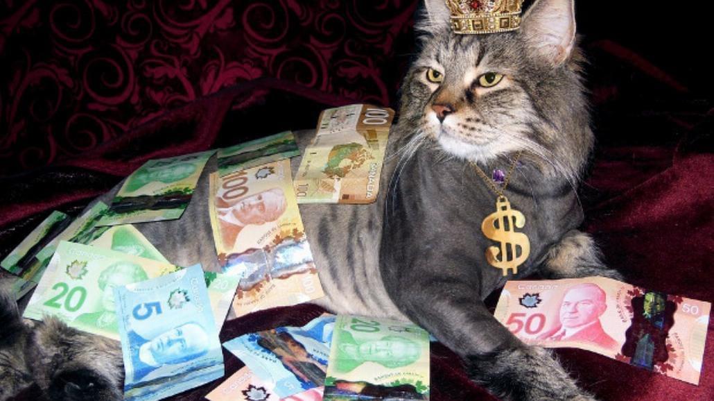 Cechy milionera, czyli co robić, aby mieć duże pieniądze?