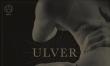 Ulver - The Assasination of Julius Caesar