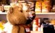 Ted  - Zdjęcie nr 8