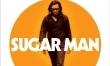 Sugar Man - polski plakat