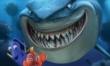 Gdzie jest Nemo?  - Zdjęcie nr 2