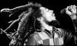 Dziś Dzień Boba Marleya  - Zdjęcie nr 14