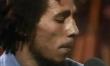 Dziś Dzień Boba Marleya  - Zdjęcie nr 13