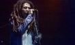 Dziś Dzień Boba Marleya  - Zdjęcie nr 9
