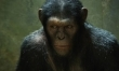 Geneza Planety Małp  - Zdjęcie nr 1