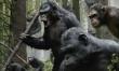 Ewolucja Planety Małp  - Zdjęcie nr 5