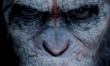 Ewolucja Planety Małp - polski plakat