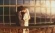 Odwróceni zakochani  - Zdjęcie nr 3