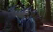 Nomadland - zdjęcia z filmu  - Zdjęcie nr 2