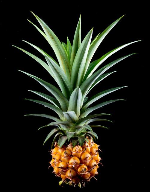 Absolutny nr jeden - ananas