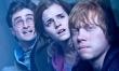 Harry Potter i Insygnia Śmierci część 2  - Zdjęcie nr 1